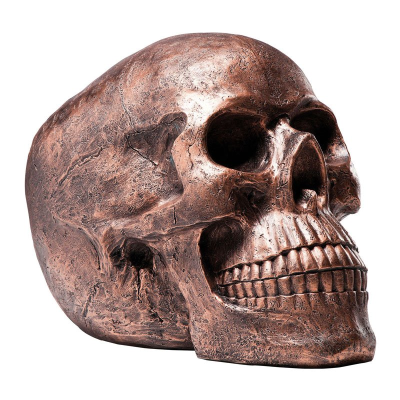 Decoratie schedel skull head copper for Decoratie schedel