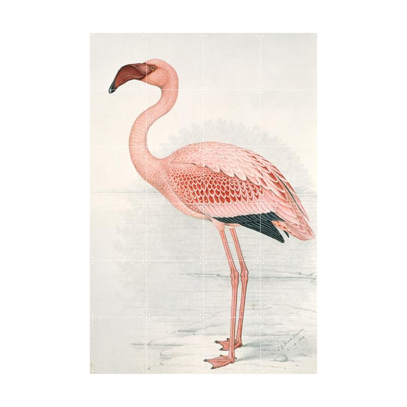 Wanddecoratie van een flamingo