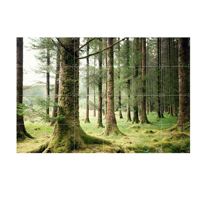 Muurdecoratie met een foto van het bos