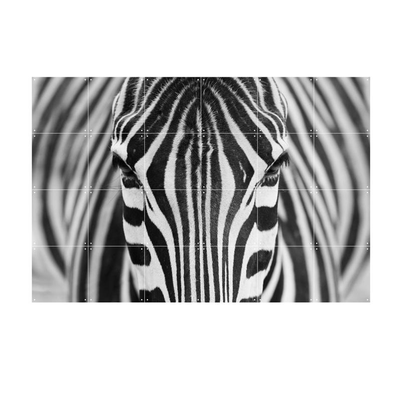 Wanddecoratie met een foto van een zebra
