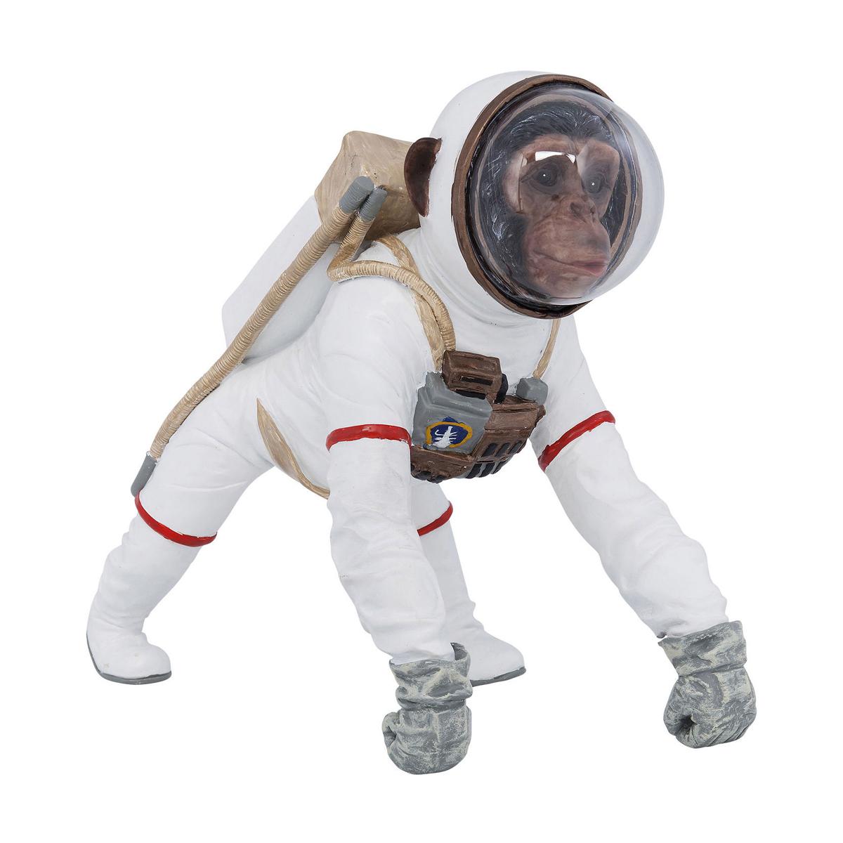 Astronaut aap