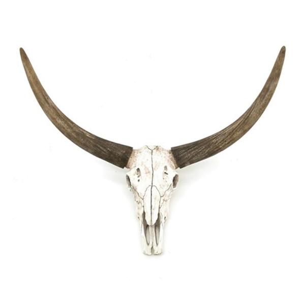 Natuurlijke dierenschedel met hoorn