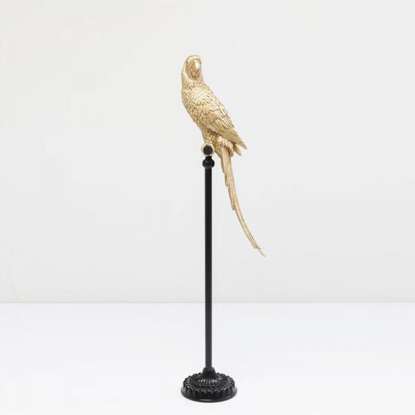 Gouden papegaai
