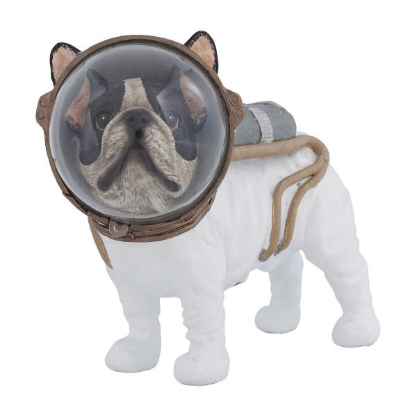 Ruimtevaarder hond