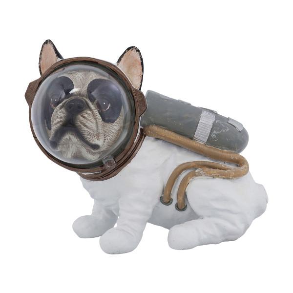 Astronaut hond