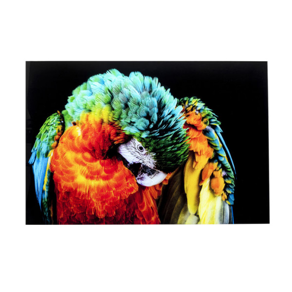 Glas schilderij papegaai
