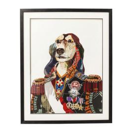 Afbeelding van honden generaal