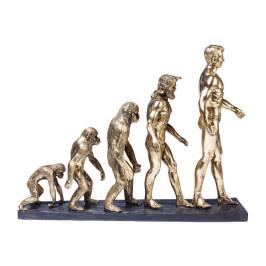 Sculptuur evolutie