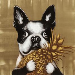 Afbeelding van hond met ananas
