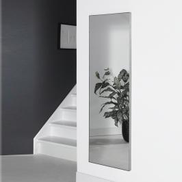 RVS Spiegel 150x50 cm