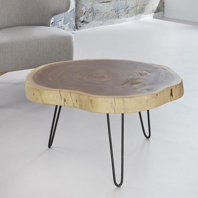 salontafel van boomstam kopen online internetwinkel. Black Bedroom Furniture Sets. Home Design Ideas